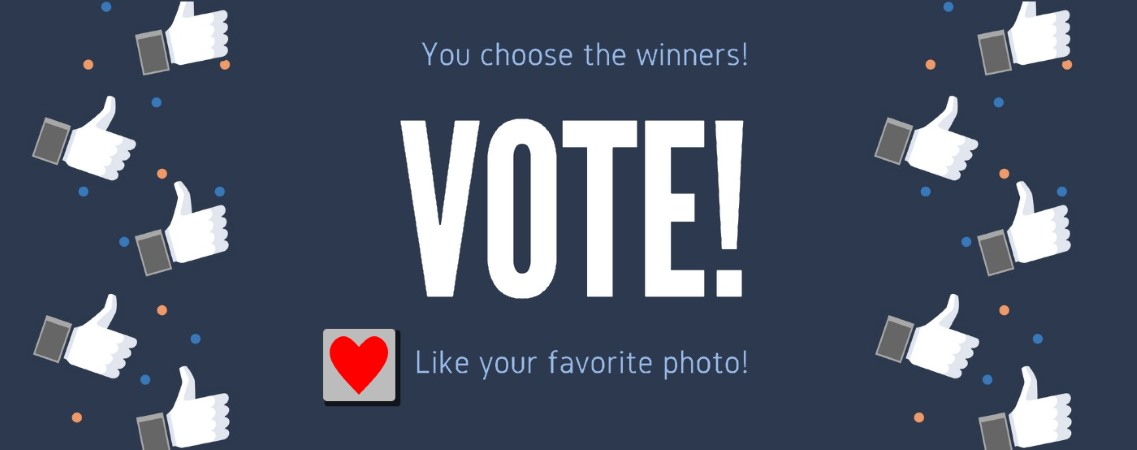 Photo Competition: Vote Here