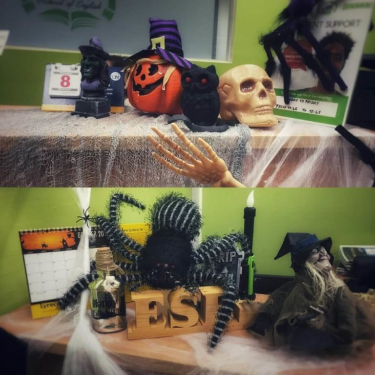 The Halloween decorations of the reception at Erin School of English